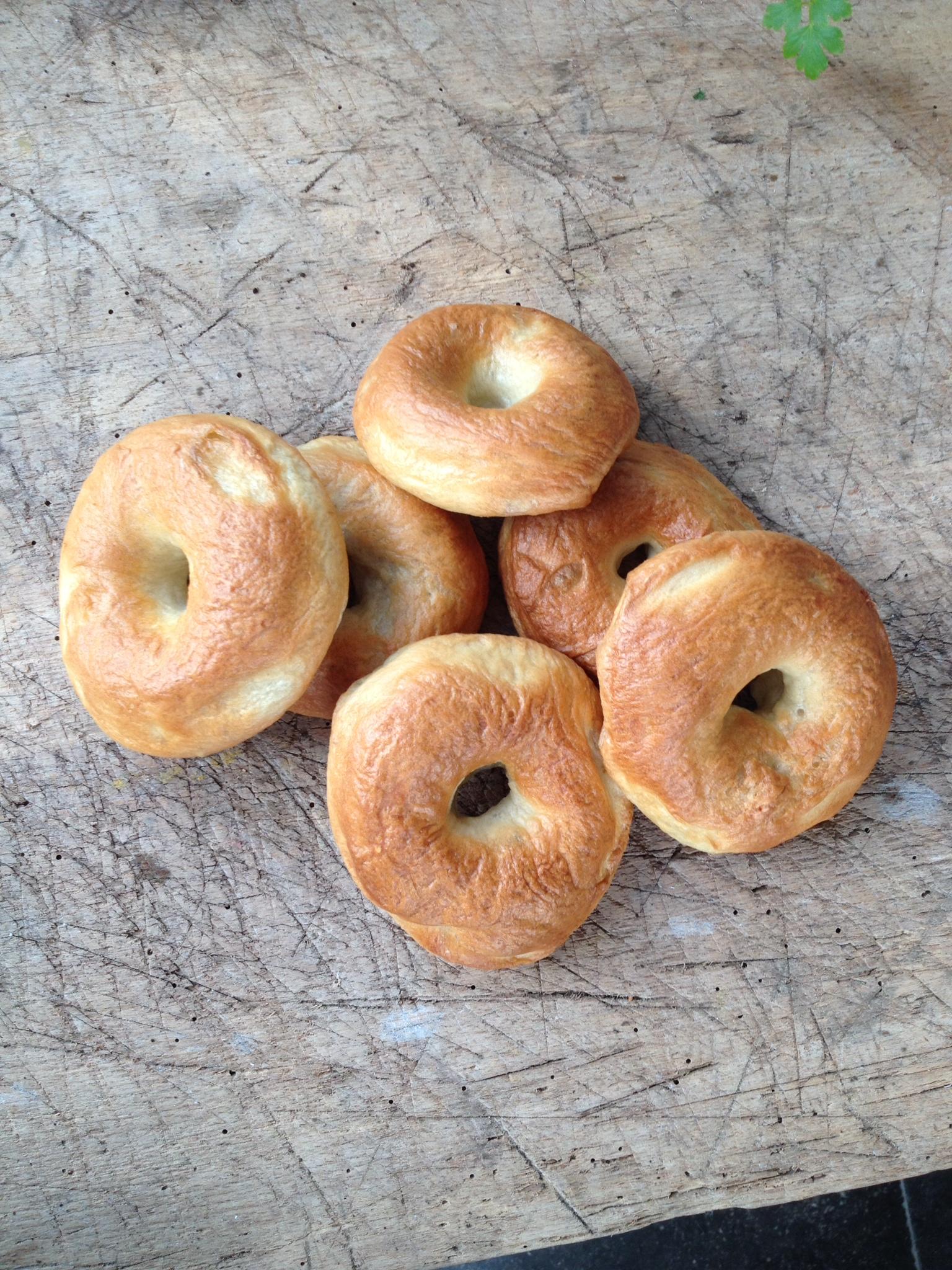 """""""Bagels"""" de super lekkere ronde broodjes met in het midden een gaatje. De meest klassieke is de bagel met roomkaas, gerookte zalm en gesnipperde ui, maar je kan ze met ontelbaar andere dingen beleggen."""